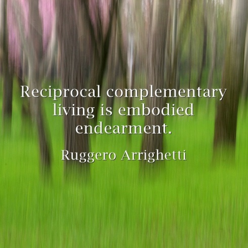 Reciprocal-complementary